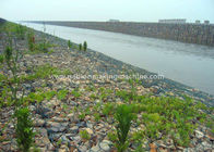 Professional Gabion Box 100 x 120mm Mesh Size For Steep Slopes Lining